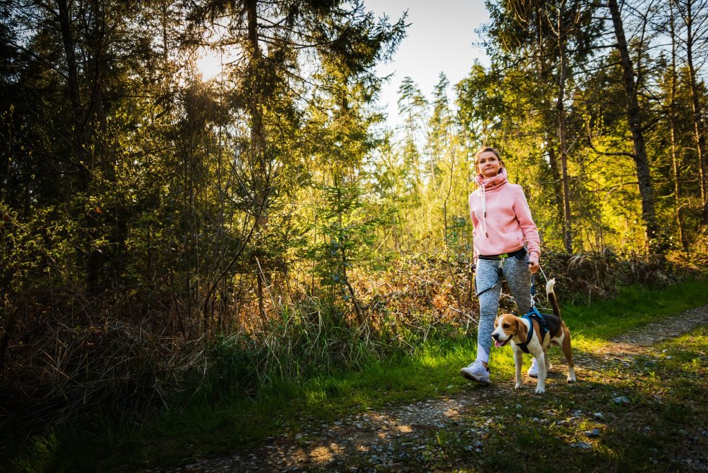 Young woman and dog walking together on country path in forest. Cheerful female exercising outdoor